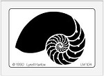Dreamweaver Medium Brass Stencil - Large Nautilus