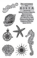 Hampton Art - 7 Gypsies - Cling Stamp Set - Under The Sea