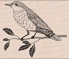 Hero Arts - Wood Mounted Rubber Stamp - Wise Bird