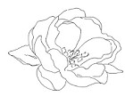 Impression Obsession Cling Mounted Rubber Stamp by Alesa Baker Designs - Rose Bloom