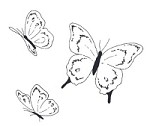 Impression Obsession Cling Mounted Rubber Stamp by Alesa Baker Designs - Butterfly Trio