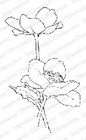 Impression Obsession - Cling Mounted Rubber Stamp - By Alesa Baker - Poppy Pair