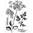 KaiserCraft - Botanica Collection - Clear Stamp