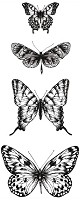 "KaiserCraft - 2"" x 5.25"" Clear Stamp - Texture Butterflies"
