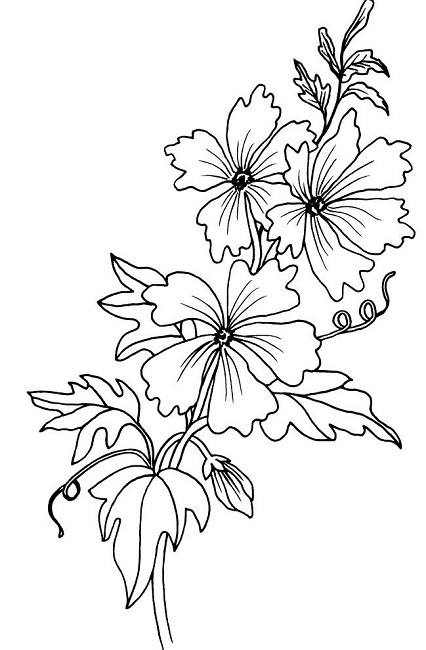 Magenta Cling Rubber Stamp Mallow Flowers