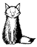 Magenta - Cling Rubber Stamp - Small Fox