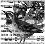 Magenta-Cling Stamp-Musical Bird Collage