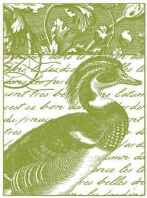 Magenta-Cling Stamp-Duck Collage