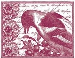 Magenta-Cling Stamp-Bird & Berries Collage
