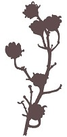 Magenta - Cling Rubber Stamp - Large Blossoming Branch