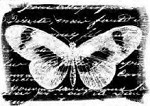 Magenta-Cling Stamp-Negative Butterfly Collage