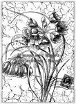 Magenta-Cling Stamp-Agapanthus Collage