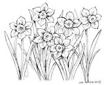 Northwoods Rubber Stamp Cluster of Daffodils