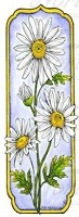 Northwoods Rubber Stamp Tall Framed Daisy
