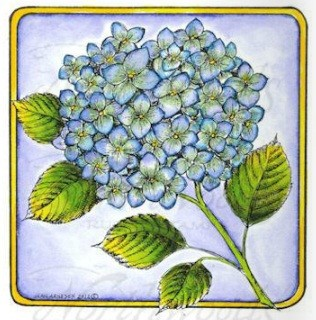 Northwoods Rubber Stamp Hydrangea Stem in Square