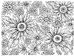 Northwoods Rubber Stamp - Gerbera Daisy Background Block