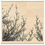 Penny Black - Wood Mounted Stamp - Delicate Branches