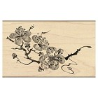 Penny Black - Wood mounted rubber stamp - Delicate Blossoms