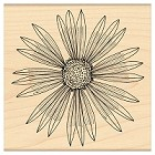 Penny Black - Wood Stamps - Sunburst
