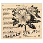 Penny Black - Wood Stamps - Flower Garden