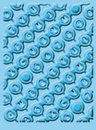 Provo Craft - CuttleBug Embossing Folder - Qwerty