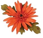 Sizzix Thinlits - Dies - by Susan Tierney-Cockburn - 5 Pack - Flower, Gerbera Daisy