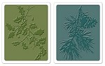 Sizzix Texture Fades Embossing Folders 2PK - Holly Branch & Pine Branch Set by Tim Holtz