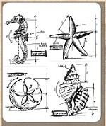 Tim Holtz - Cling Rubber Stamp Set - Nautical Blueprint