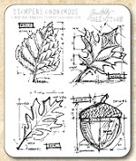 Tim Holtz - Cling Rubber Stamp Set - Autumn Blueprint