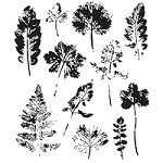 Stamper's Anonymous / Tim Holtz - Cling Mounted Rubber Stamp Set - Leaf Prints