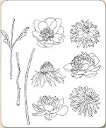 Stamper's Anonymous / Tim Holtz - Cling Mounted Rubber Stamp Set - Flower Garden