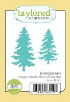 Taylored Expressions - Die - Evergreens