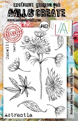 AALL & Create - Clear Stamp A5 size - Set #452 Astrantia