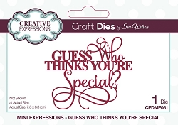 Sue Wilson Designs - Die - Mini Expressions - Guess Who Thinks You're Special