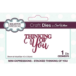 Sue Wilson Designs - Die - Mini Expressions - Stacked Thinking of You