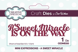 Sue Wilson Designs - Die - Mini Expressions - A Sweet Miracle