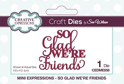 Sue Wilson Designs - Die - Mini Expressions - So Glad We're Friends