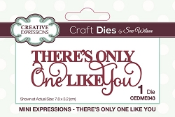 Sue Wilson Designs - Die - Mini Expressions - There's Only One Like You