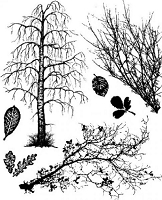 Art Journey - Unmounted Rubber Stamps - Branches