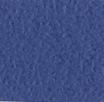 Bazzill Cardstock (orange peel)-Navy