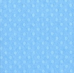 Bazzill Cardstock (dotted swiss)-Poolside