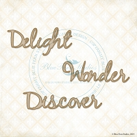 Blue Fern Studios - Chipboard - Delight Set