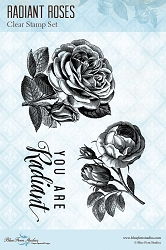 Blue Fern Studios - Radiant Roses Clear Stamp