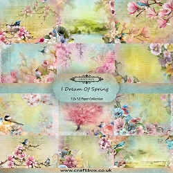 Craft Box - I Dream Of Spring Collection - Paper Kit