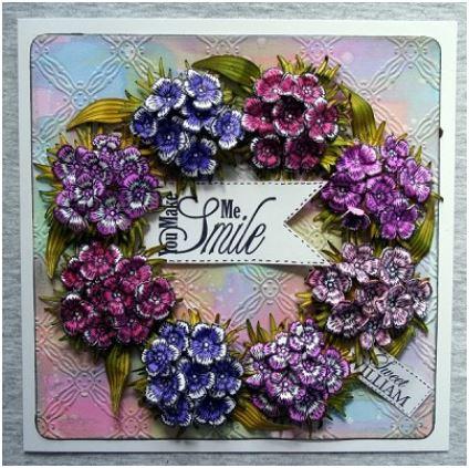 New SWEET WILLIAM Flower SHEENA DOUGLASS Cutting Die Set