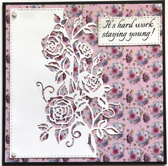 Creative Expressions - 5 new Paper Cuts edge dies
