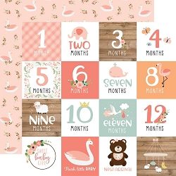 Echo Park - Baby Girl Collection - Milestone Cards 12