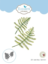Elizabeth Craft Designs - Die - Garden Notes Ostrich Fern by Susan Tierney Cockburn