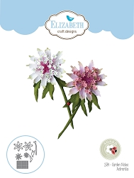 Elizabeth Craft Designs - Die - Garden Notes Astrantia by Susan Tierney Cockburn