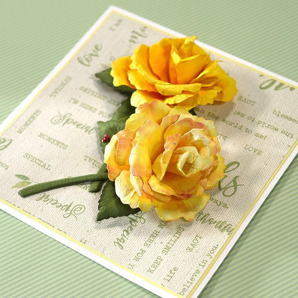 Elizabeth Craft Garden Notes-English Rose에 대한 이미지 검색결과
